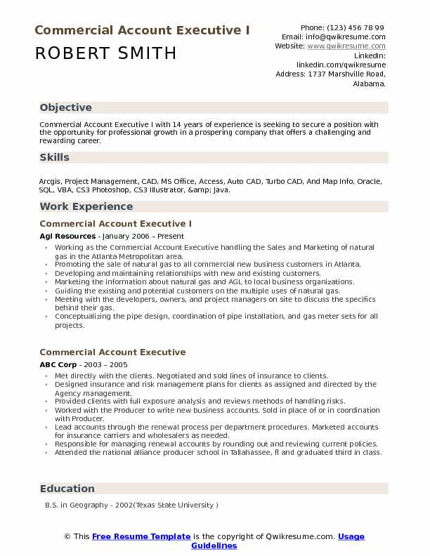 Commercial Account Executive I Resume Sample