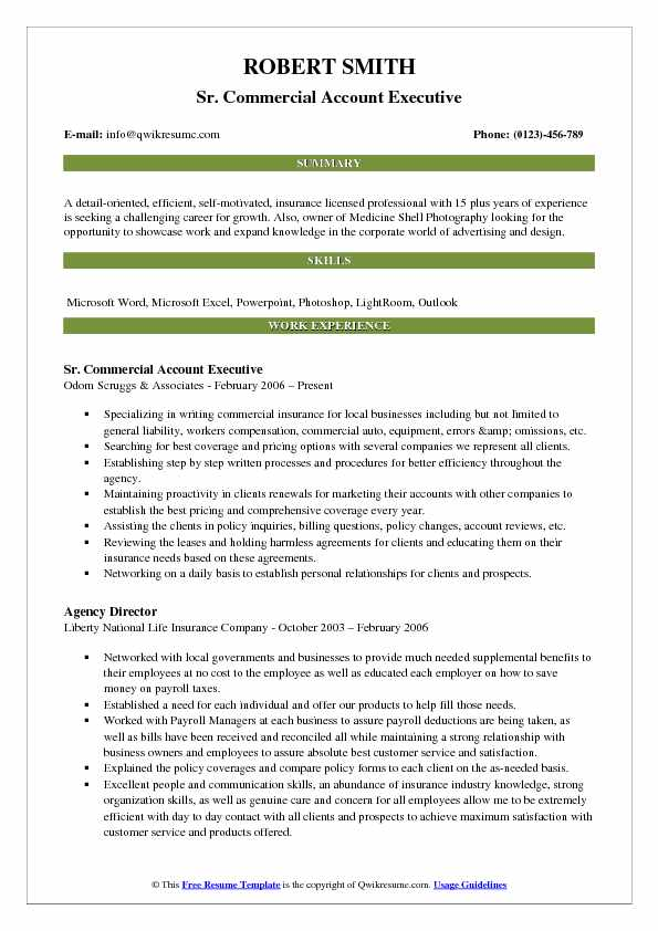 Sr. Commercial Account Executive Resume Template