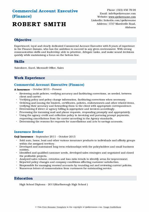 Commercial Account Executive (Finance) Resume Template