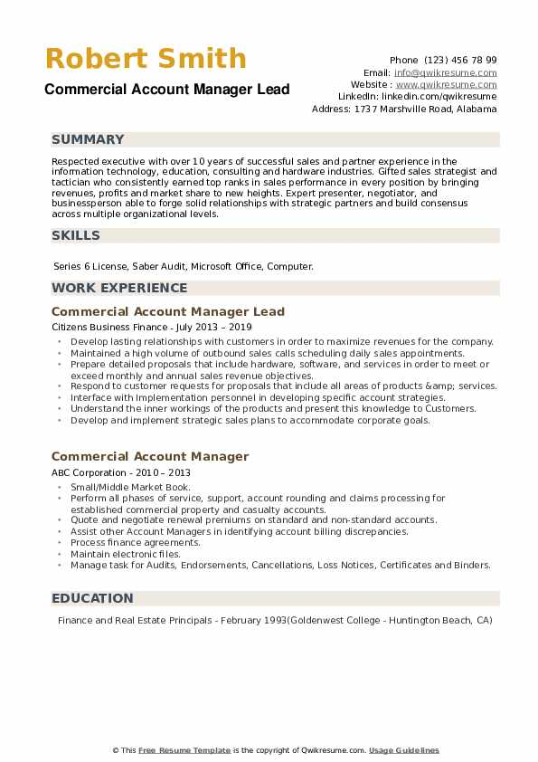 Commercial Account Manager Lead Resume Example
