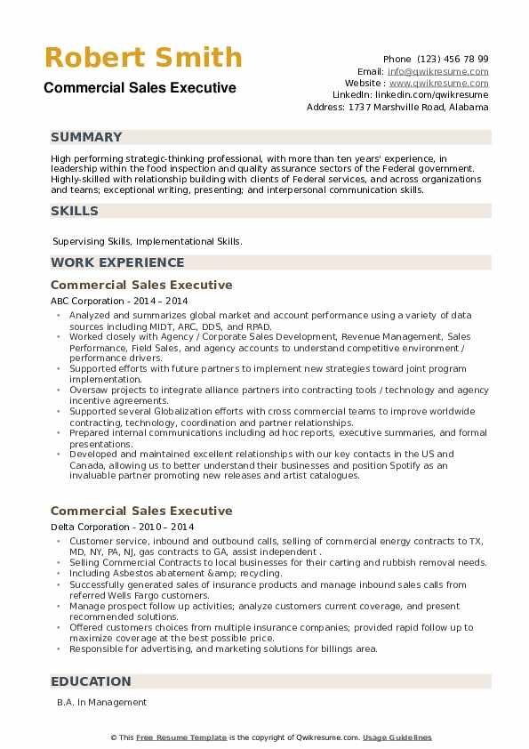 Commercial Sales Executive Resume example