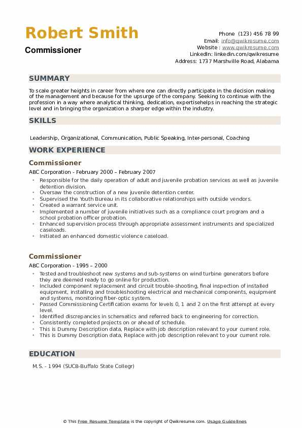 Commissioner Resume example