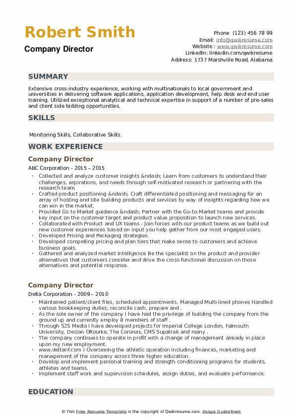 Company Director Resume example