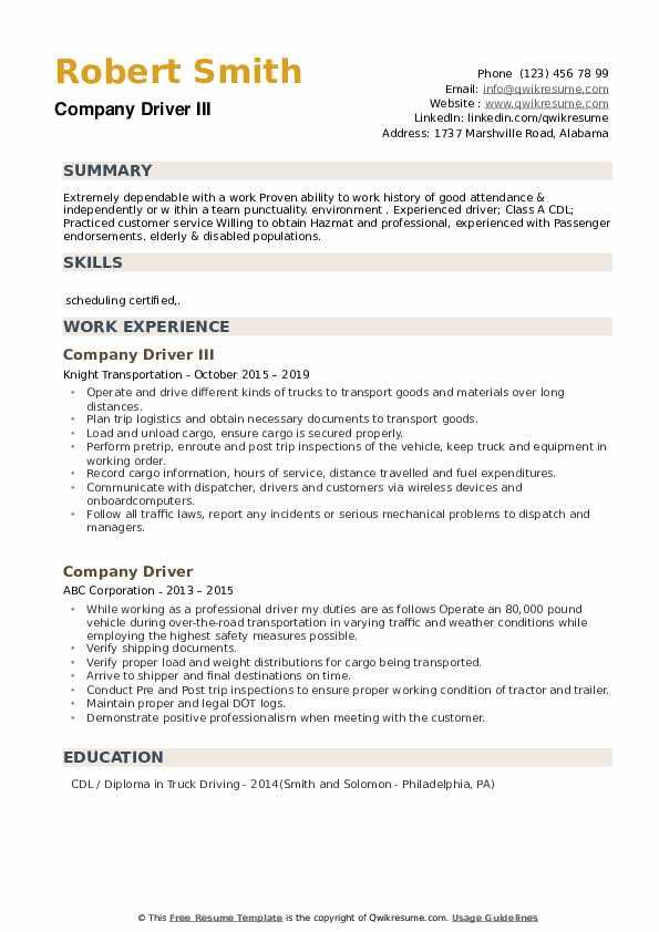 Company Driver III Resume Example