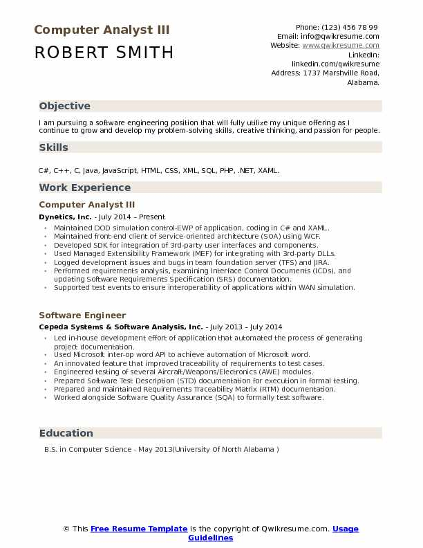 computer analyst resume samples