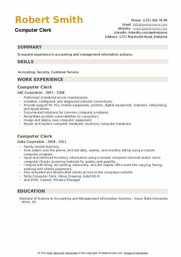 Computer Clerk Resume example