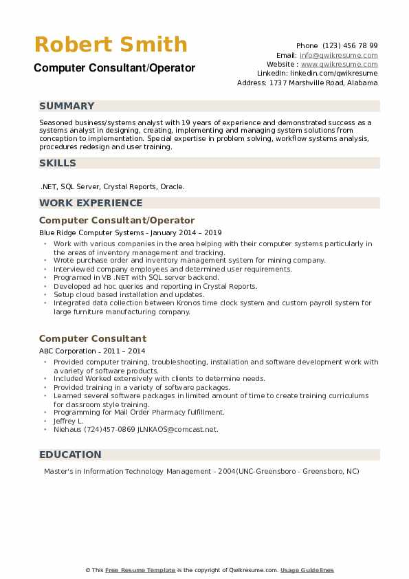 computer consultant resume samples