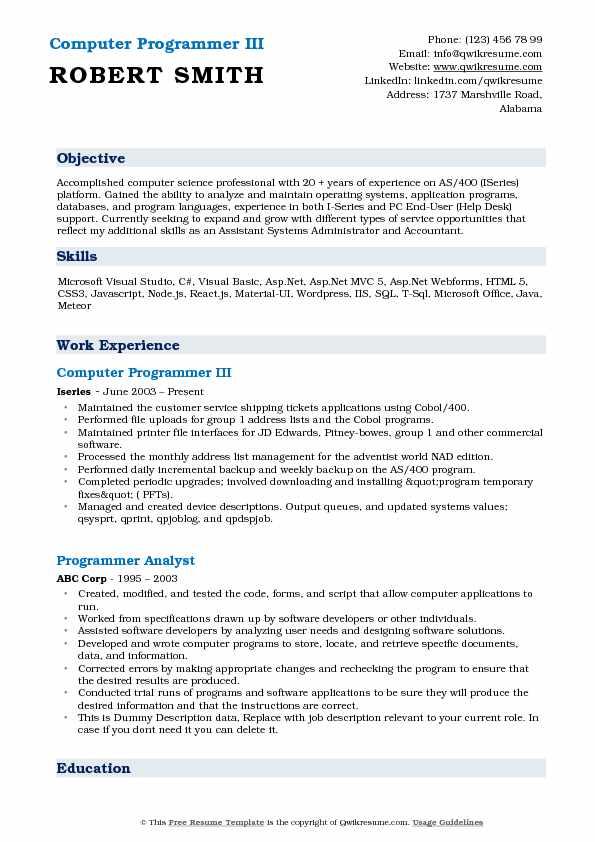 Computer Programmer III Resume Example