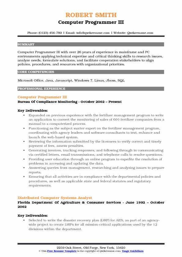 Computer Programmer III Resume Format