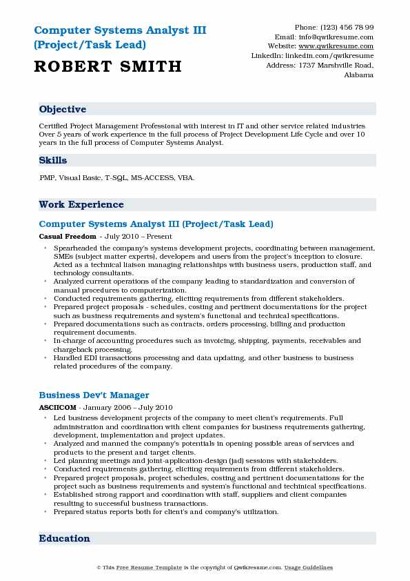 Computer Systems Analyst III (Project/Task Lead) Resume Model