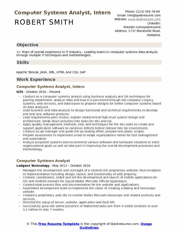Computer Systems Analyst, Intern Resume Sample