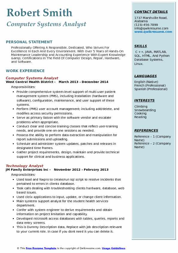computer systems analyst resume example - System Analyst Resume Sample Free