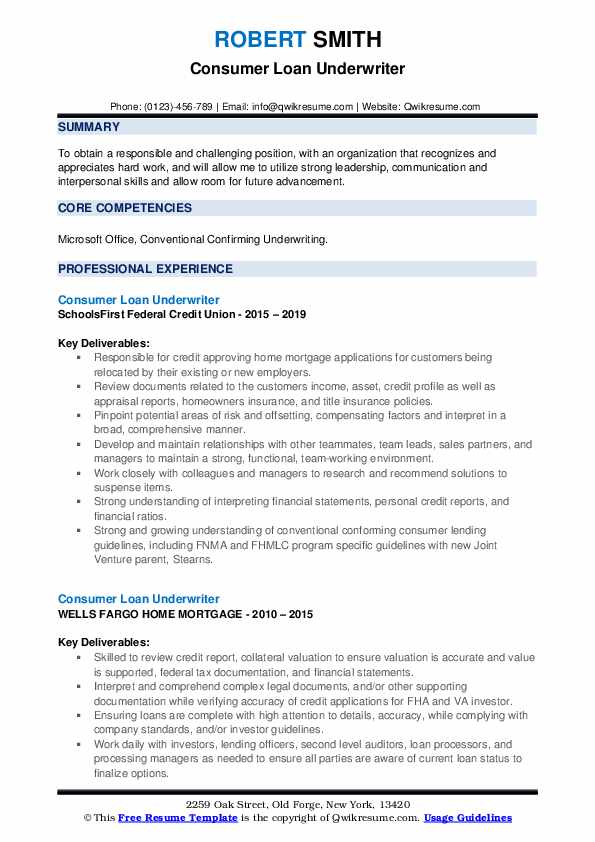 Consumer Loan Underwriter Resume example
