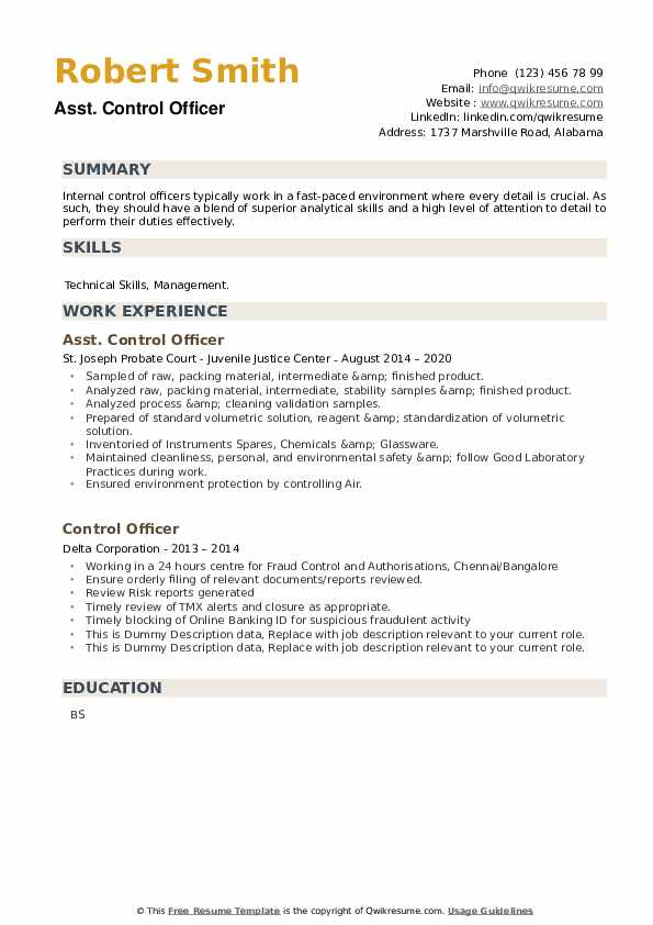 Control Officer Resume example