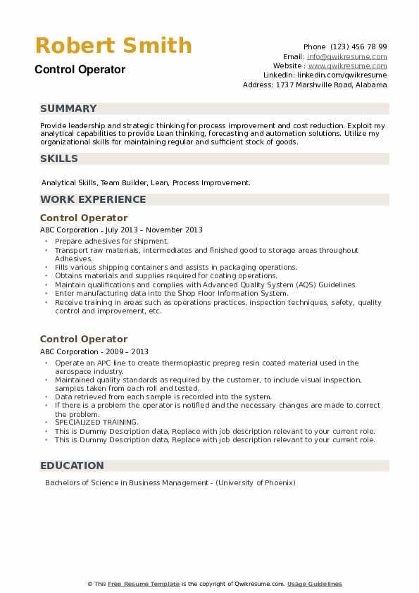 Control Operator Resume example