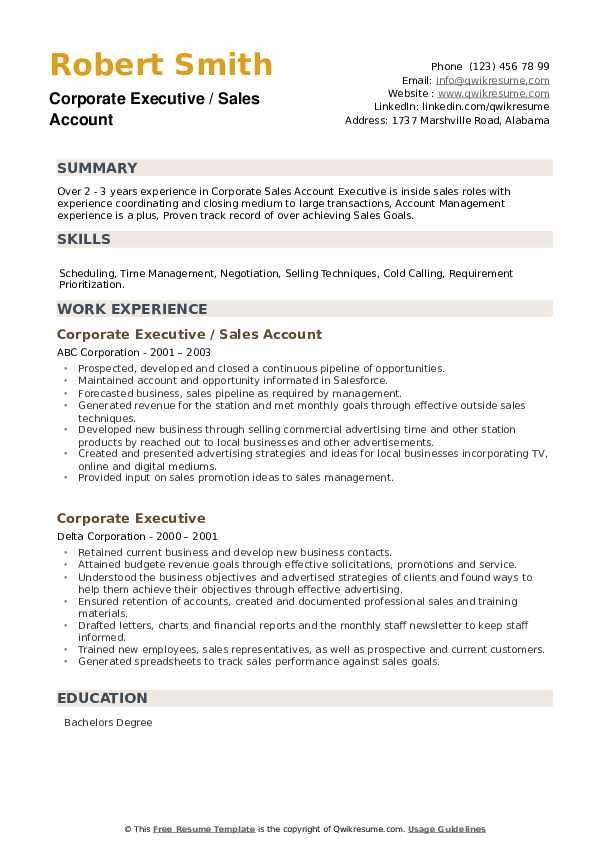 Corporate Executive Resume example