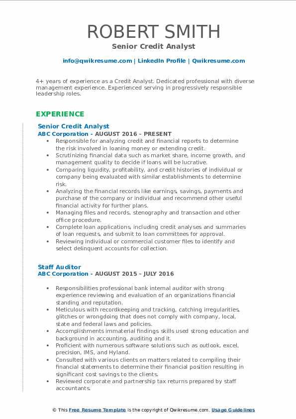 Senior Credit Analyst Resume Model