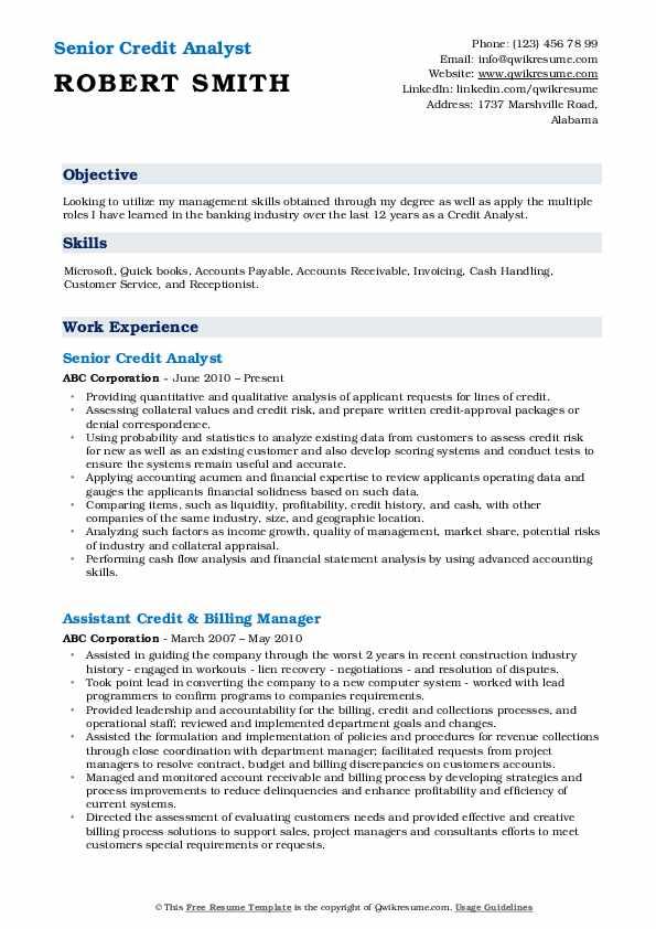 Senior Credit Analyst Resume Format