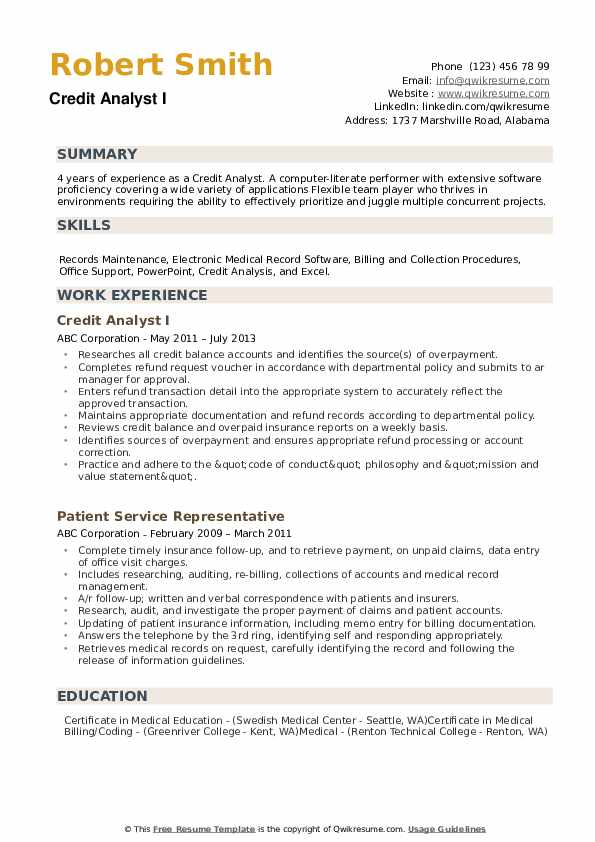 Credit Analyst Resume example