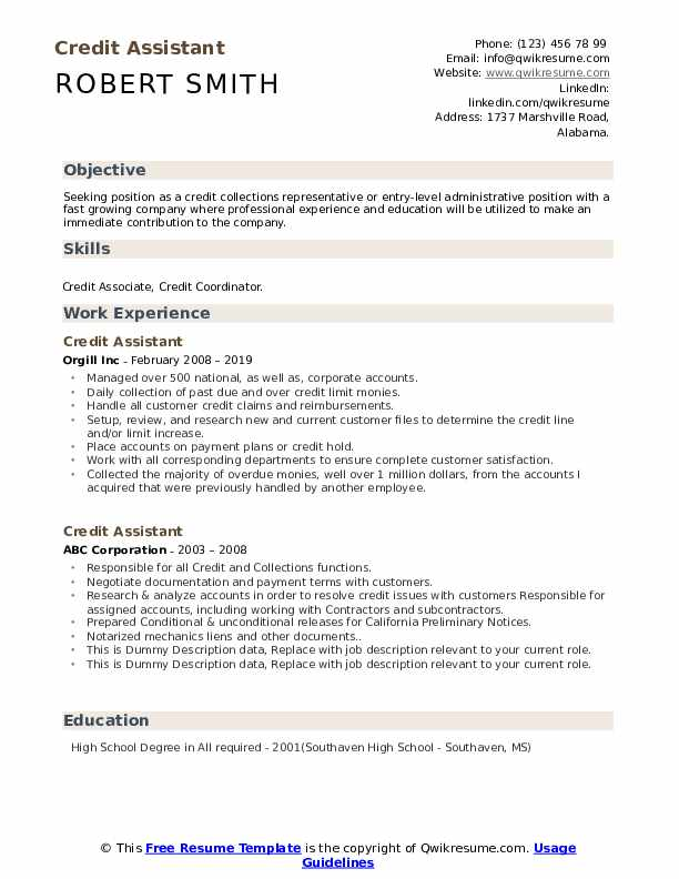 Credit Assistant Resume example
