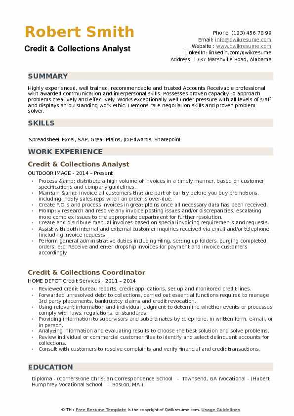 Credit Collections Analyst Resume example