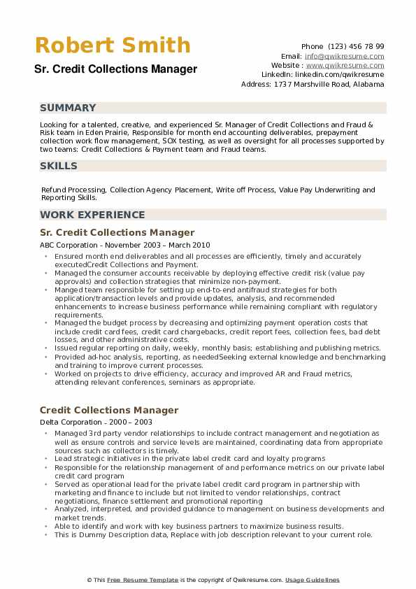 Credit Collections Manager Resume example