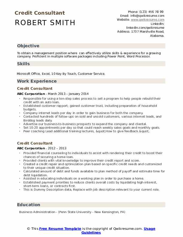 Credit Consultant Resume example