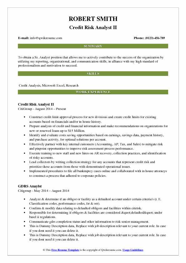 Credit Risk Analyst II Resume Example
