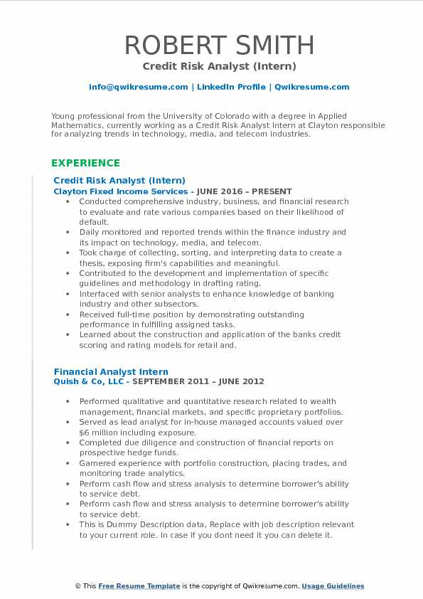 Credit Risk Analyst Intern Resume Template