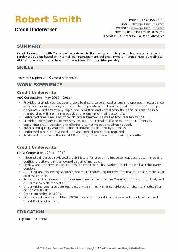 Credit Underwriter Resume example