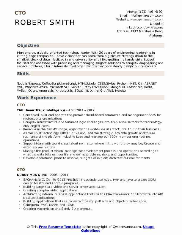 CTO Resume Model