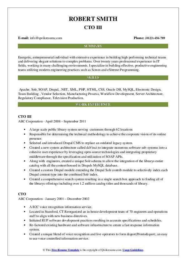 CTO III Resume Format