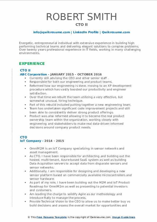 CTO II Resume Sample