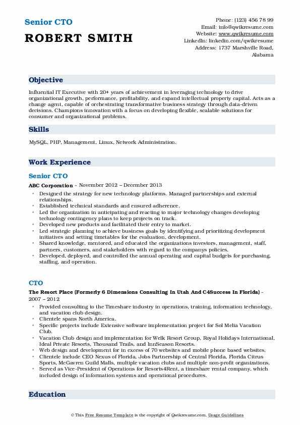 Senior CTO Resume Format