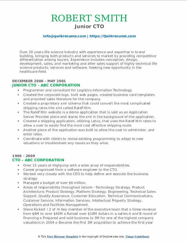 Junior CTO Resume Format