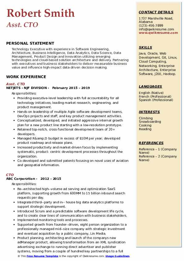 Asst. CTO Resume Example