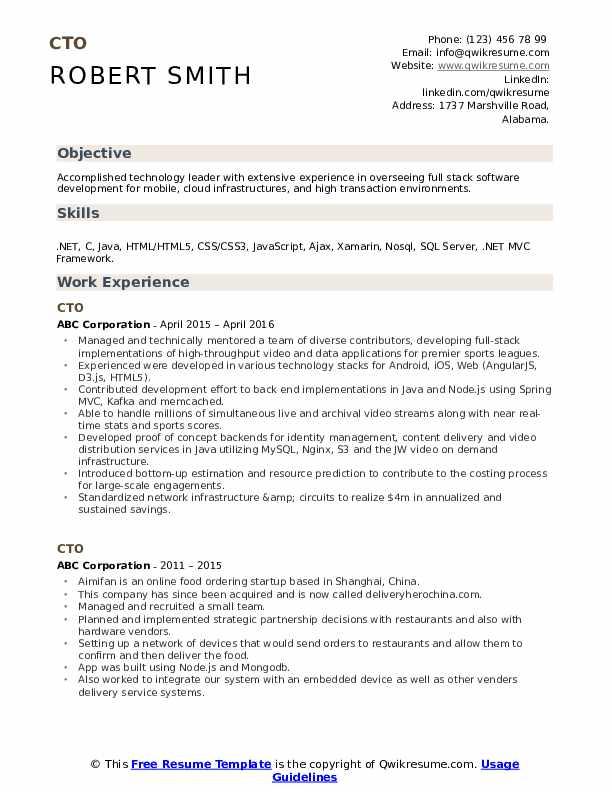 CTO Resume example
