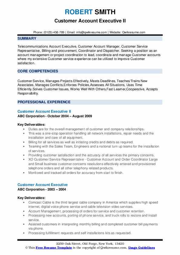 Customer Account Executive II Resume Model