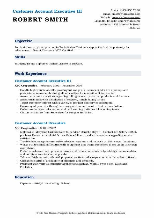 Customer Account Executive III Resume Format