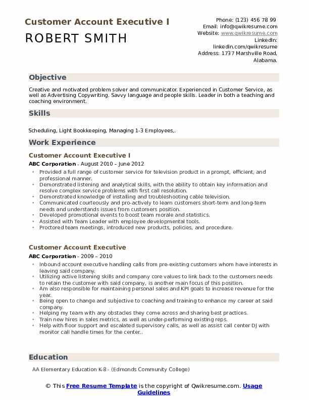 Customer Account Executive I Resume Example