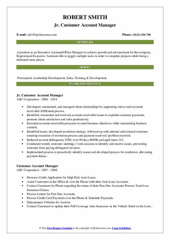 Jr. Customer Account Manager Resume Model