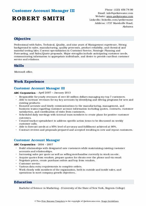 Customer Account Manager III Resume Model