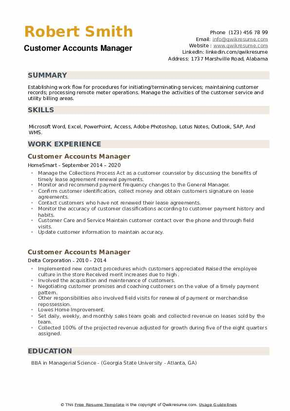 Customer Accounts Manager Resume example