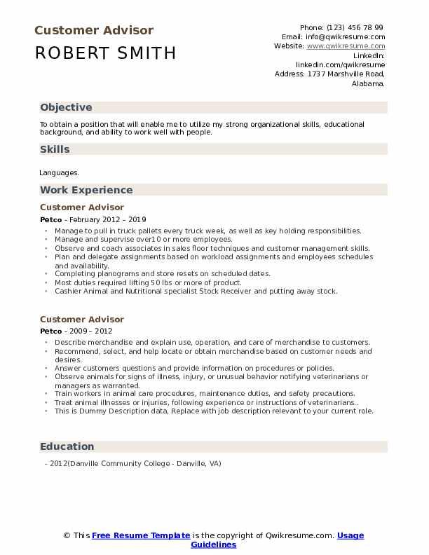 Customer Advisor Resume example