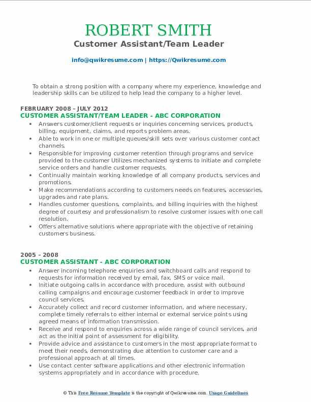 Customer Assistant/Team Leader Resume Format