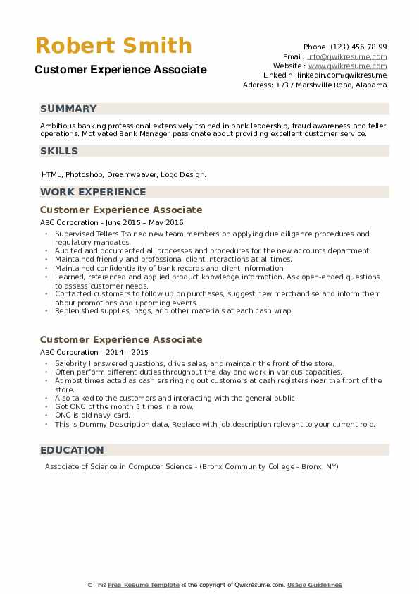 Customer Experience Associate Resume example