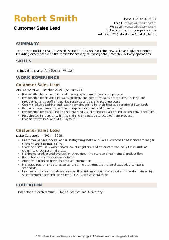 Customer Sales Lead Resume example