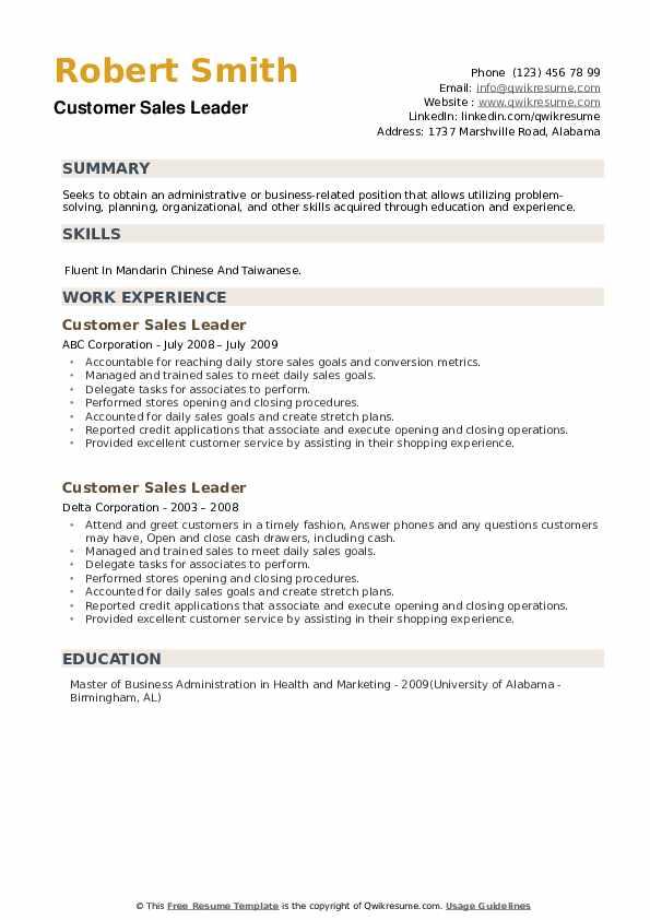 Customer Sales Leader Resume example