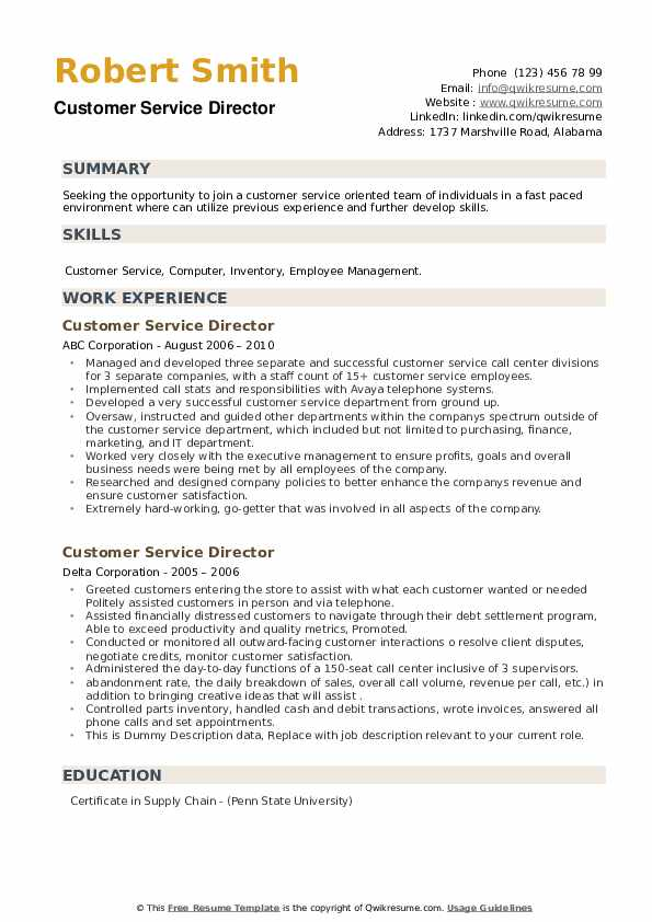 Customer Service Director Resume example