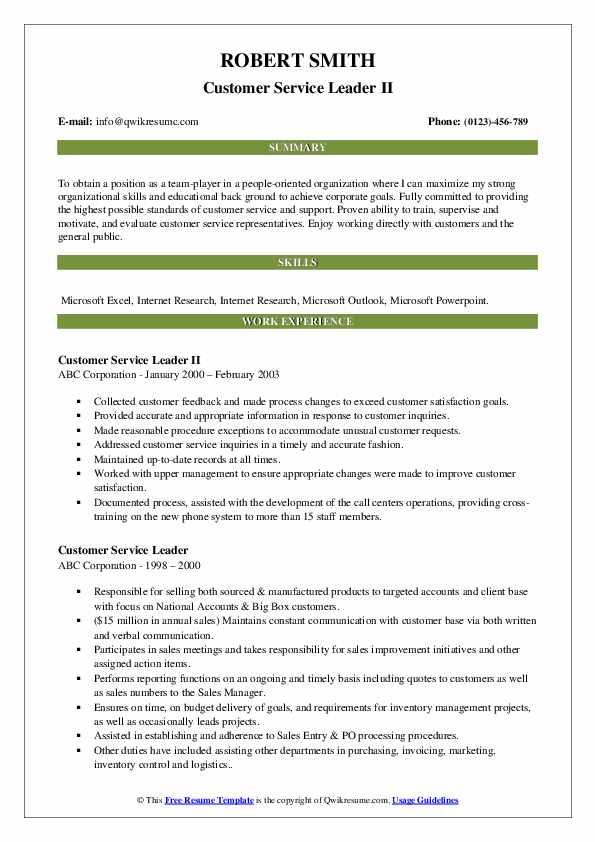 Customer Service Leader II Resume Example